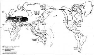 In carne e ossa: DNA, cibo e culture dell'uomo preistorico