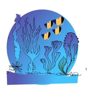Un gusto unico che viene dal mare...le alghe